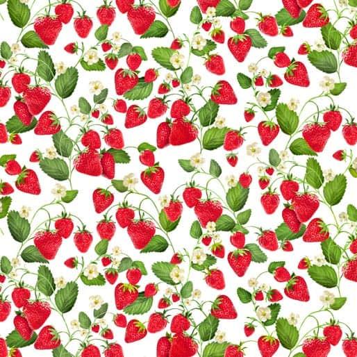 Strawberry Fields White Vine